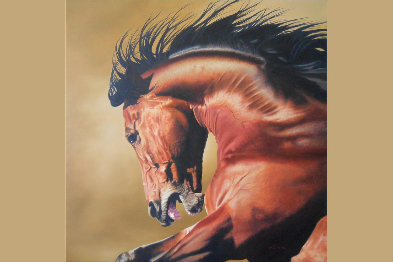 wild-horse-Douzinas-Stavros